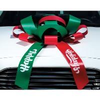 Magnetic Car Bows